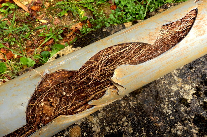 Blocked Drain Pipe in Wolverhampton West Midlands